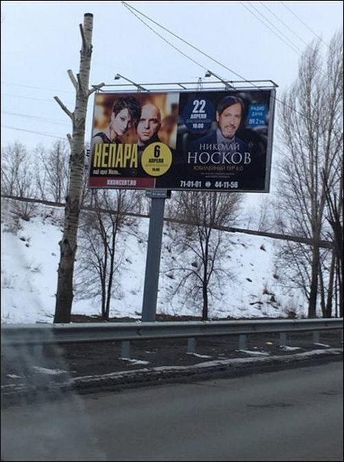 51efcd Снято в нужный момент)))