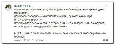 "file_003-1 Соцсети снова ""жгут"""