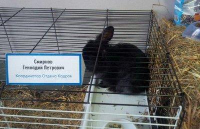 "file_012-2 Народные ""МЕГАХИТЫ"""