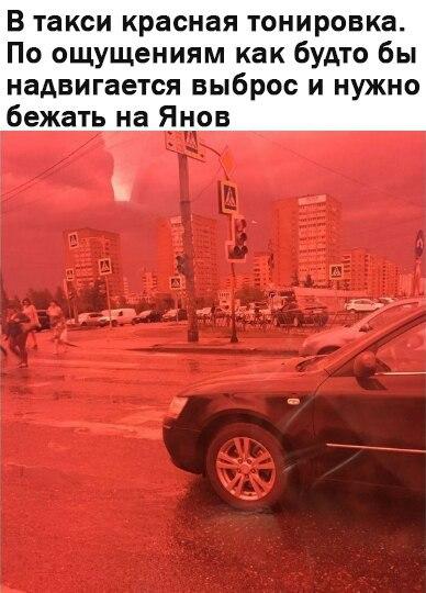 янов сталкер