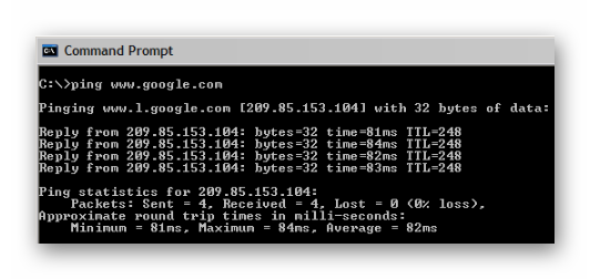 0200028 Сбор информации о сети:  Telnet, NslookUp, Ping, Tracert, Netstat.